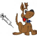Očkování pes